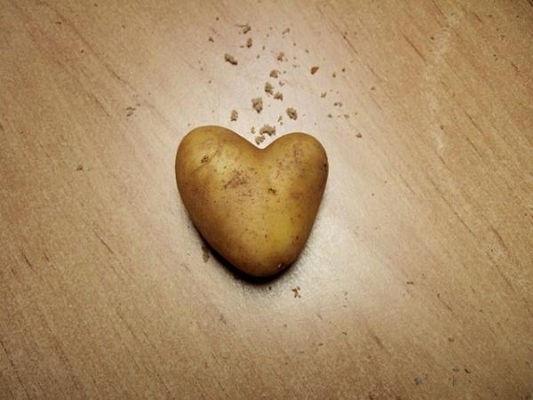potato-203899_640